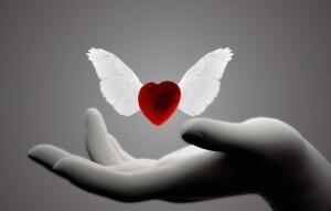 cuore ali mano